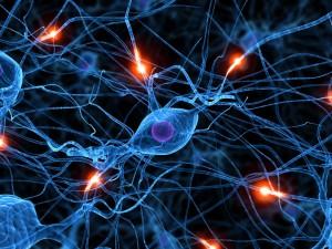Realmente podemos cambiar gracias a la plasticidad del cerebro