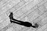 La Sombra. Jung.